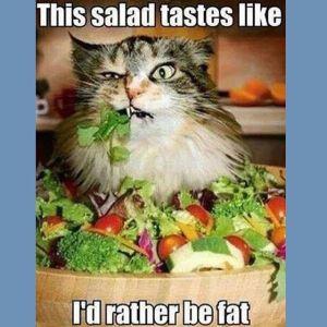 Jenni-Jwoww-Farley-Salad-Diet-Cat-Meme