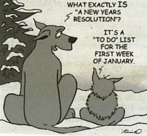 wpid-new-years-resolution-list